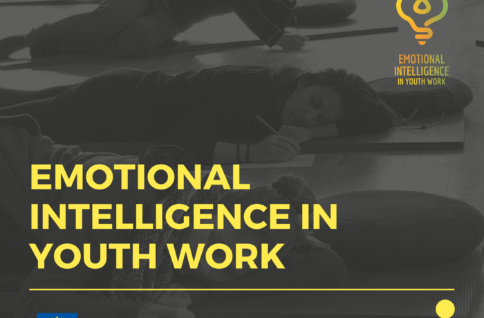 Emotional Intelligence in Youth Work