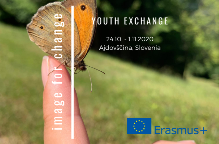 Youth exchange: Image for change